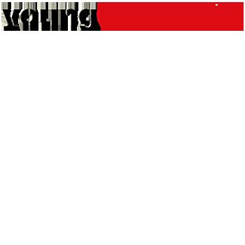 youngcaritas.png
