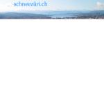 schneezürich.png