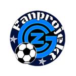 fanprojekt züri gc.png